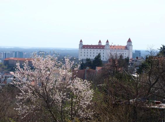 Bratislavský hrad Foto Martha Bielska