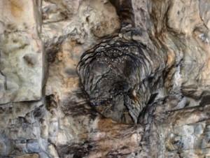 Stanišovská jaskyňa_7 Foto Martha Bielska